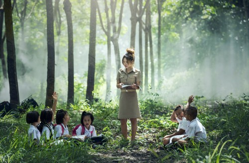 forest-outdoor-book-read-light-people-783701-pxhere.com.jpg