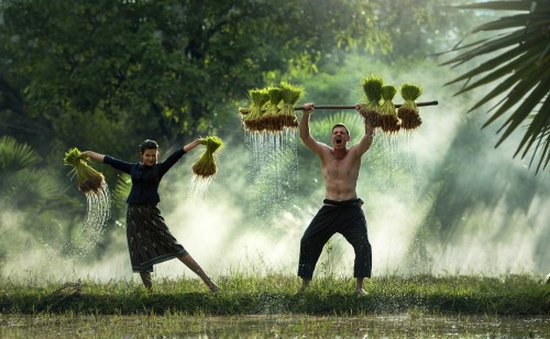 water-grass-outdoor-people-growth-plant-1271243-pxhere.com.jpg